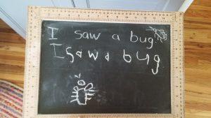 i saw a bug, chalkboard, homeschool handwriting, boys catching bugs