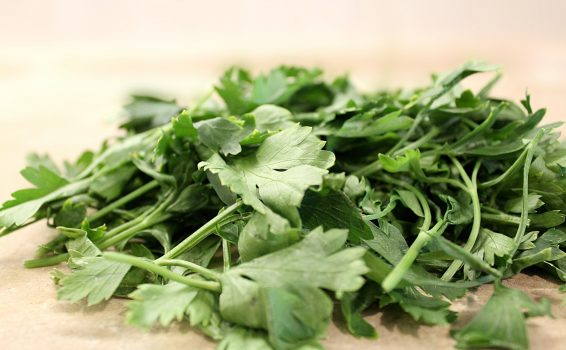 How to Store Fresh Parsley
